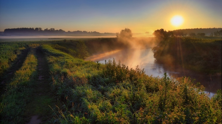 fog_haze_road_country_grass_sun_morning_dawn_river_53921_1366x768
